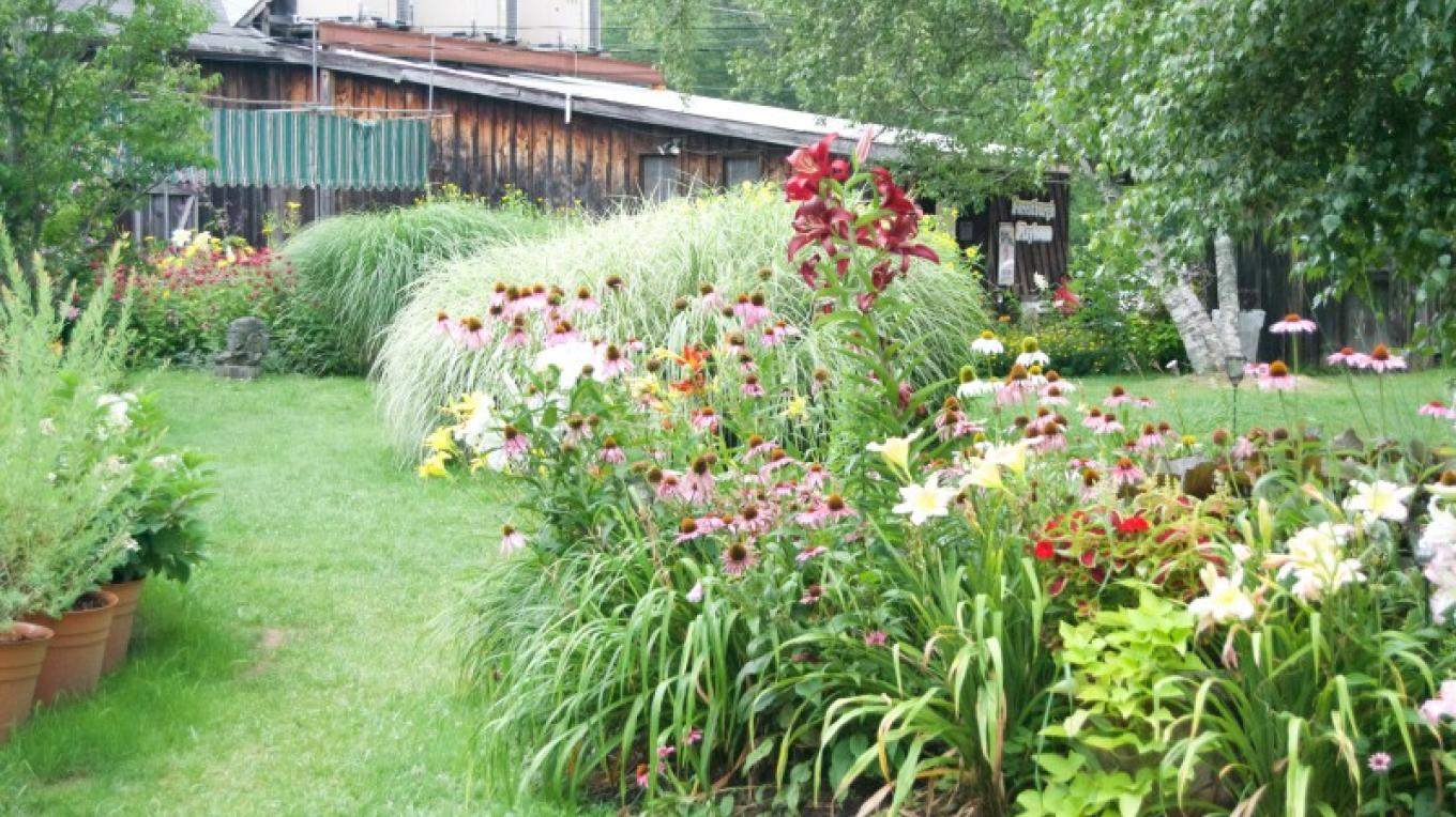Award Winning Gardens 2015 – Franklin Trapp