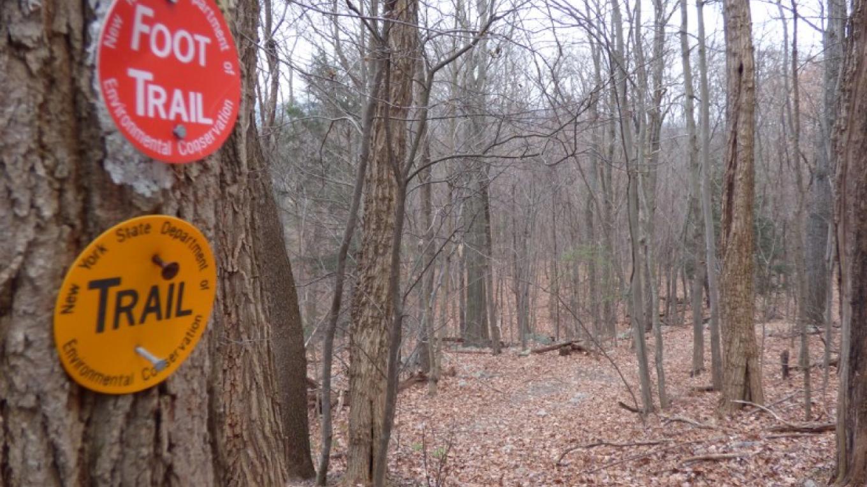 Trail Markers – Lynn M. Burns