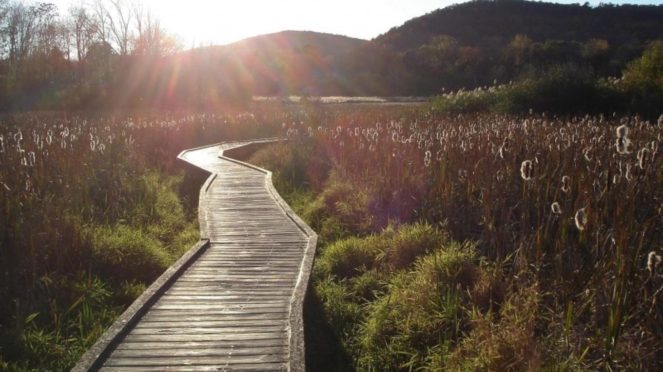 The Appalachian Trail Boardwalk off the Western Highlands Scenic Byway corridor – Maro Kasparian