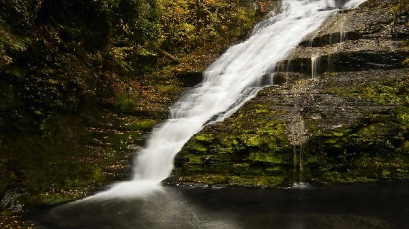 Dingmans Falls in Autumn – Michael Pyle