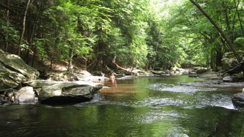 Ten Mile River – Tina Spangler