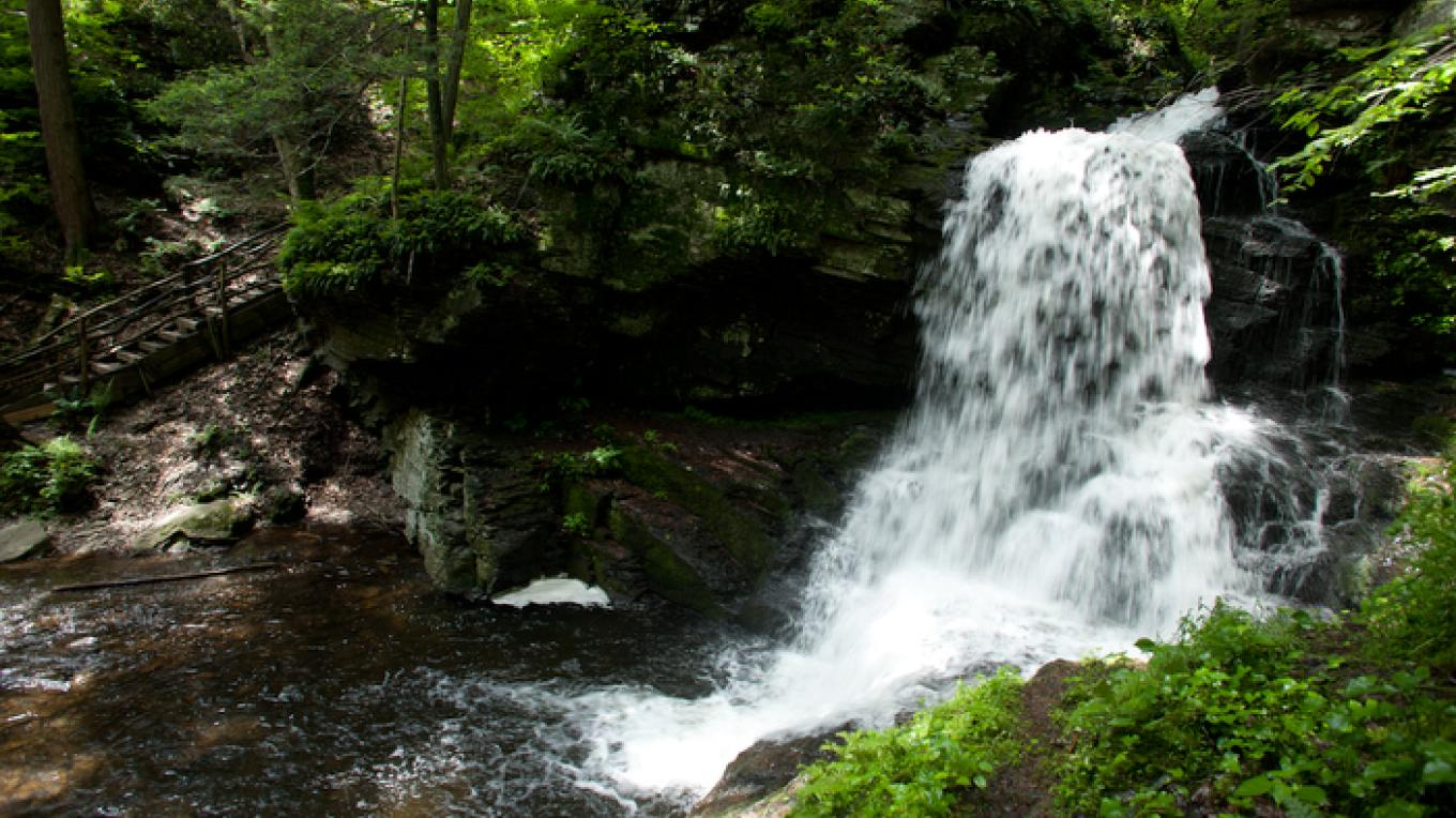 Waterfalls can be seen from any of the hiking trails. – David W. Coulter