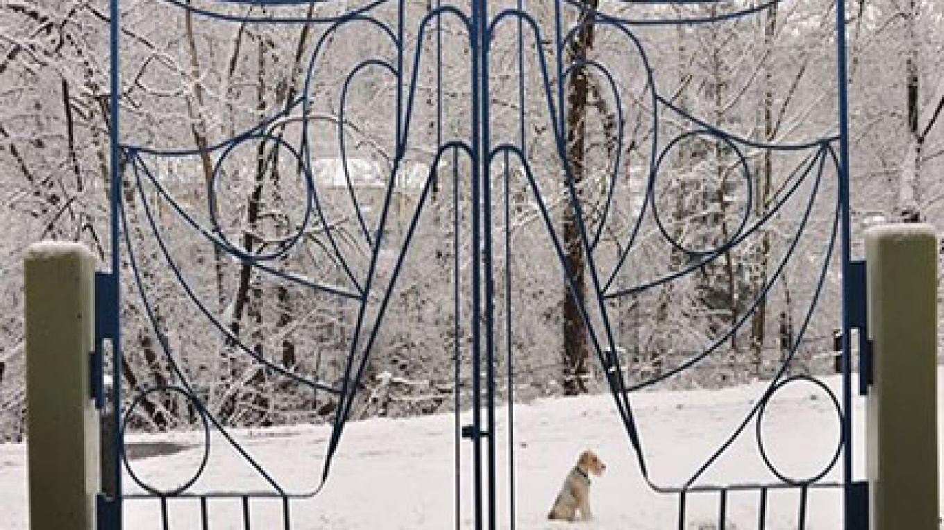 Willie Cole Gate – Photograph by: City of Easton