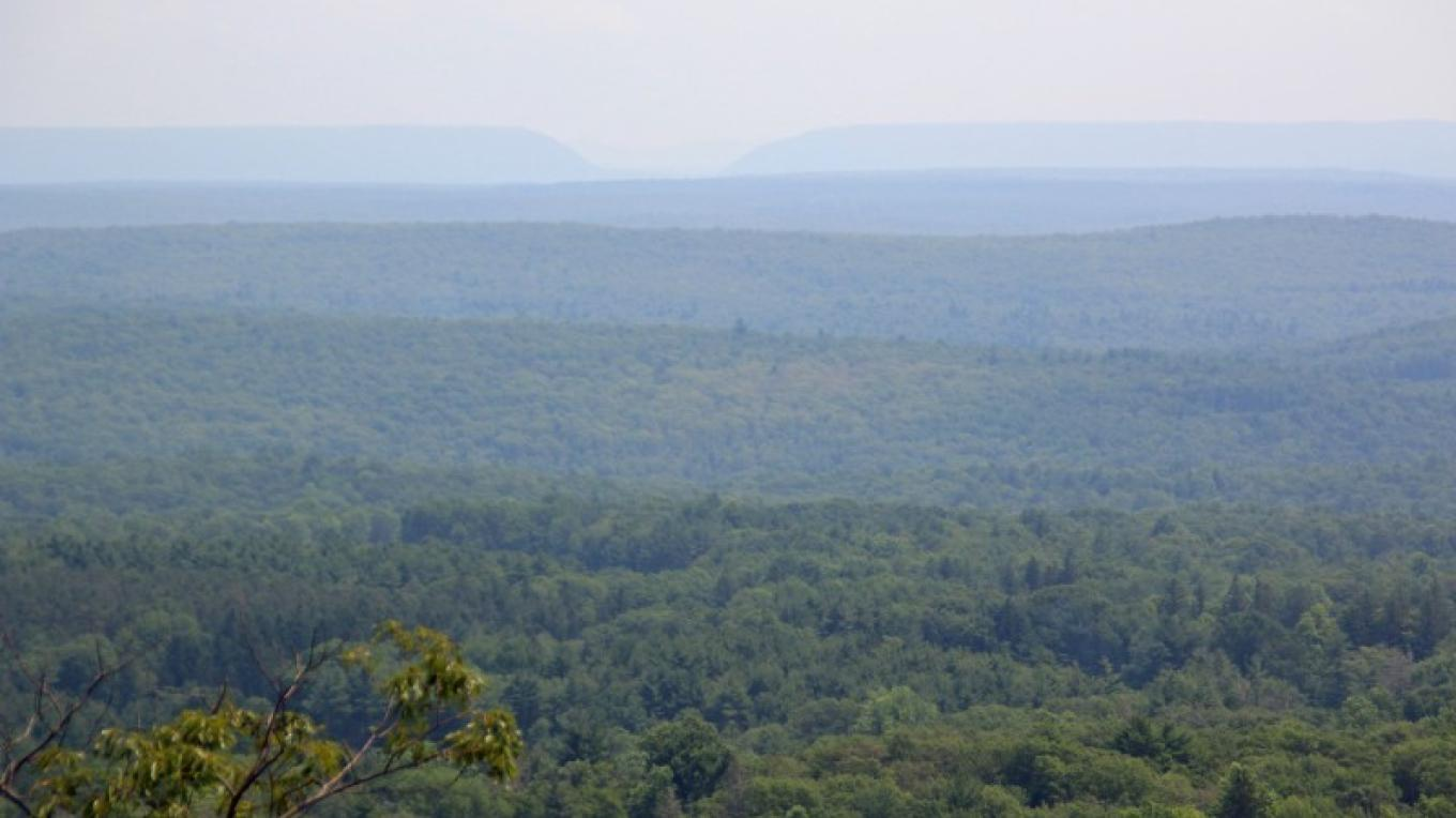 View from the top, toward Delaware Water Gap. – Nancy J. Hopping