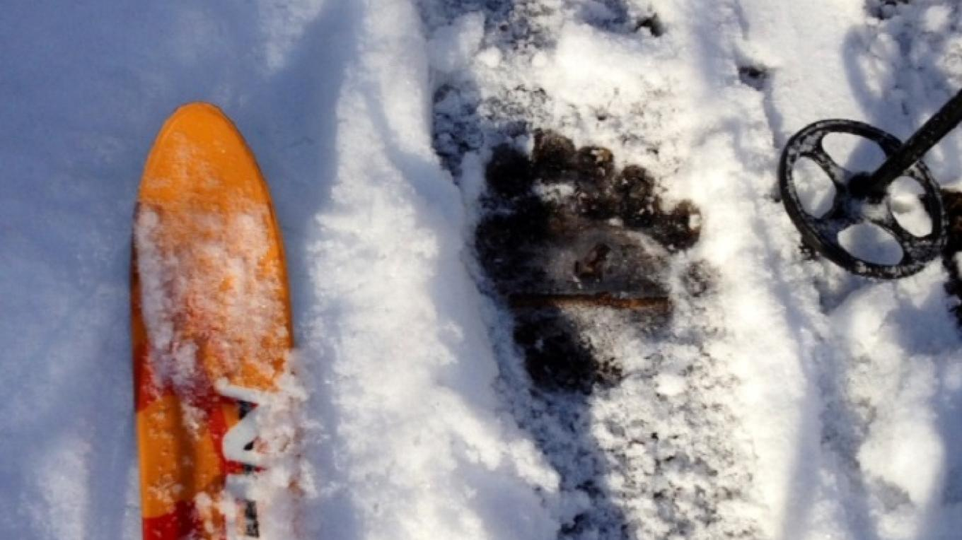 Skiing in the footsteps of a local