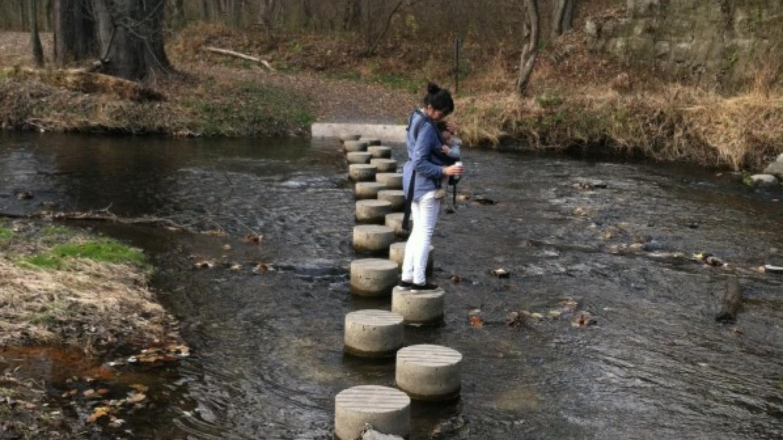 Cherry Creek Stepping Stone bridge – Susan Cooper