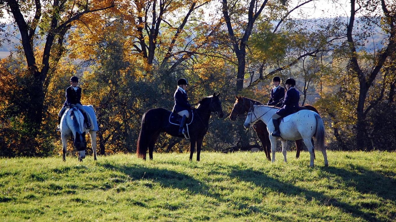 Genesee Valley Hunt captured by Larry Tetamore