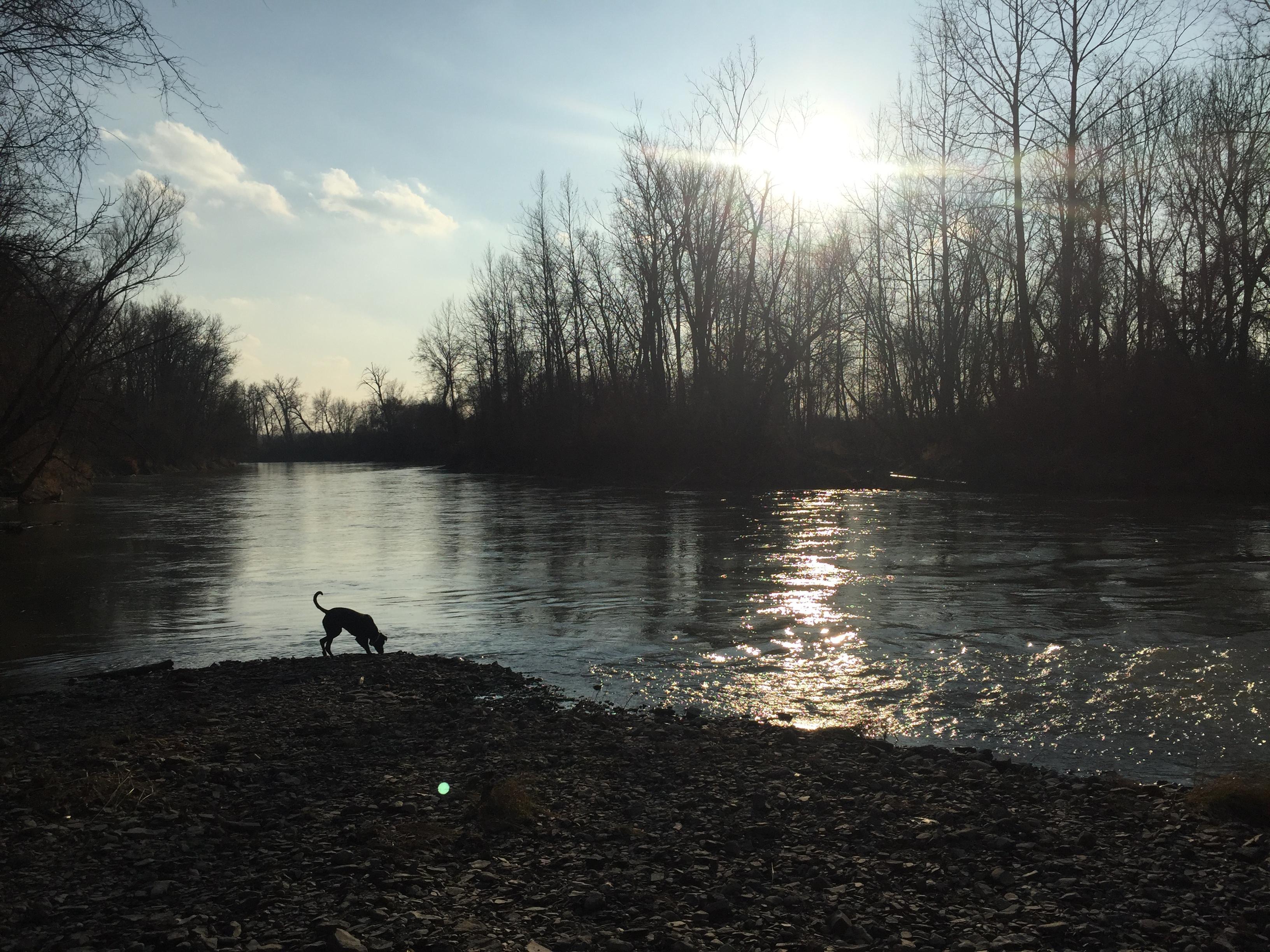 River – Nicole Manapol