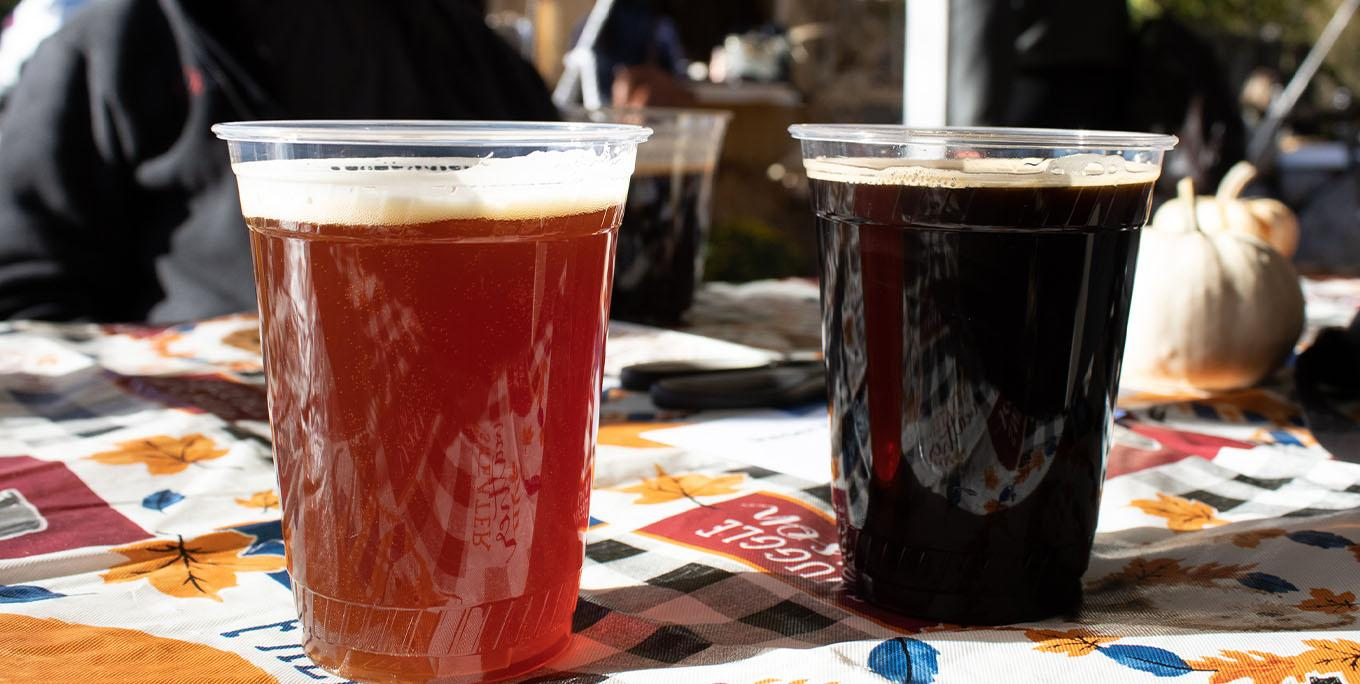Two beers at Birdhouse Brewing Co. Photo by Nina Piccini.