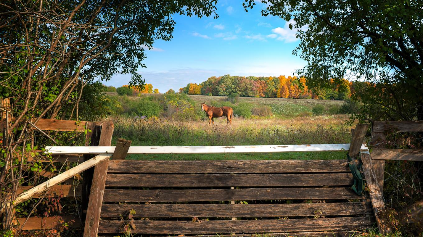 Genesee Valley Horse Country, Roots Tavern Road