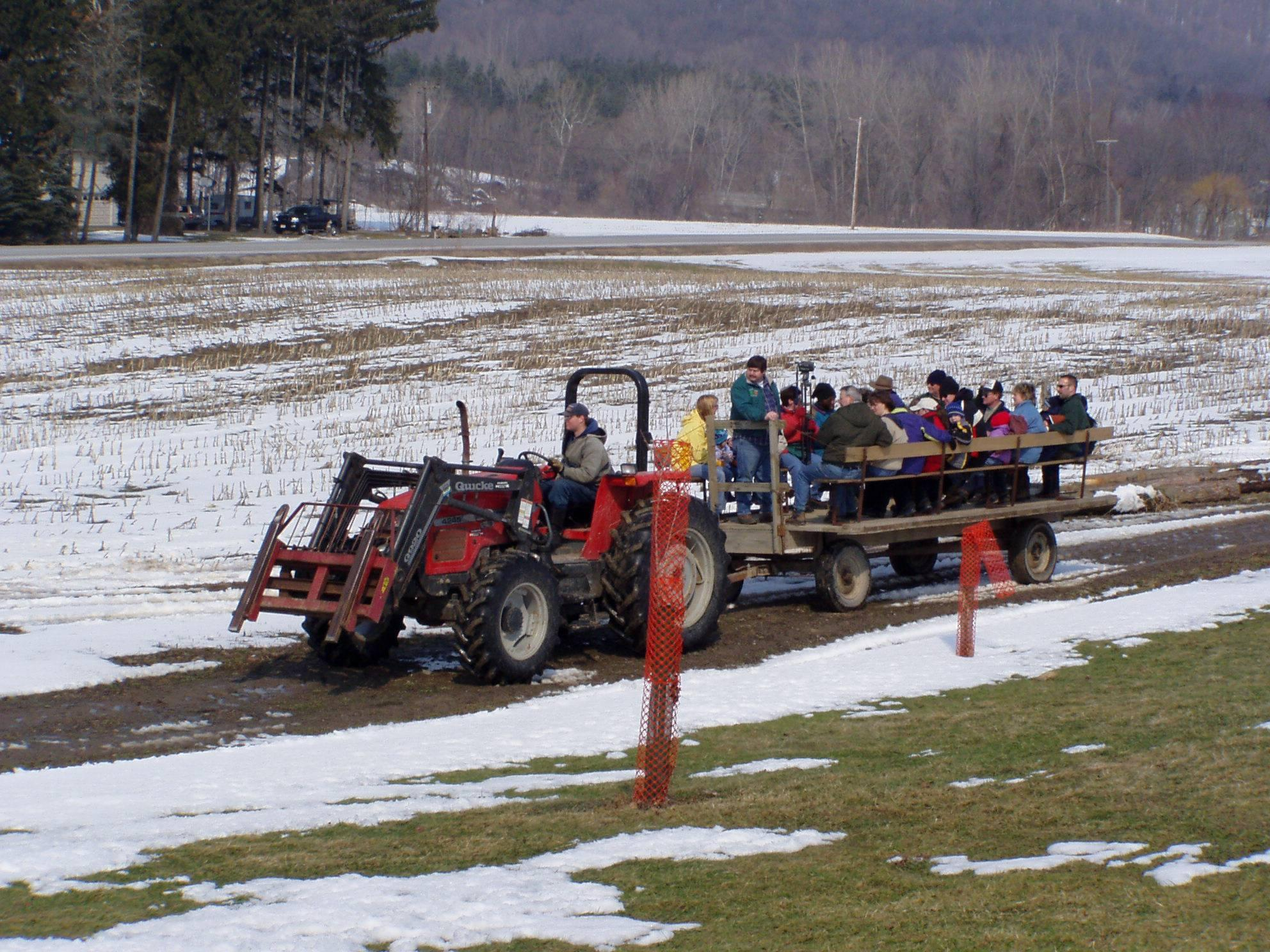 Visitors enjoy tractor tours around the farm at the annual Merle Maple open house