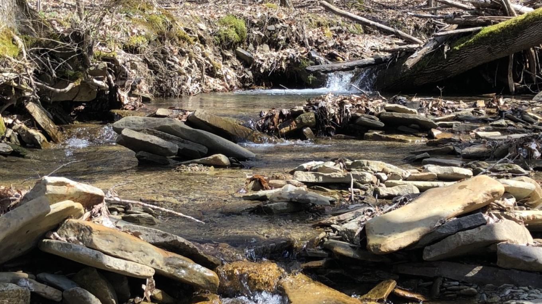 Rattlesnake Hill Stream