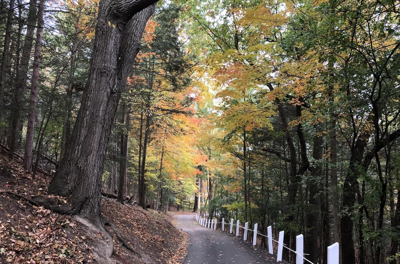 Finger Lakes Trail at Sickles Street to Murray Hill and Al Lorenz Park
