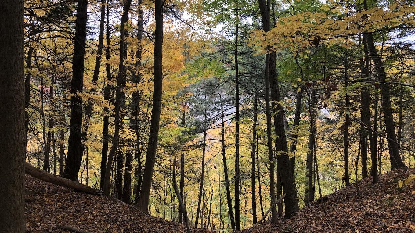 Finger Lakes Trail between Al Lorenz Park and the Mount Morris Dam Area