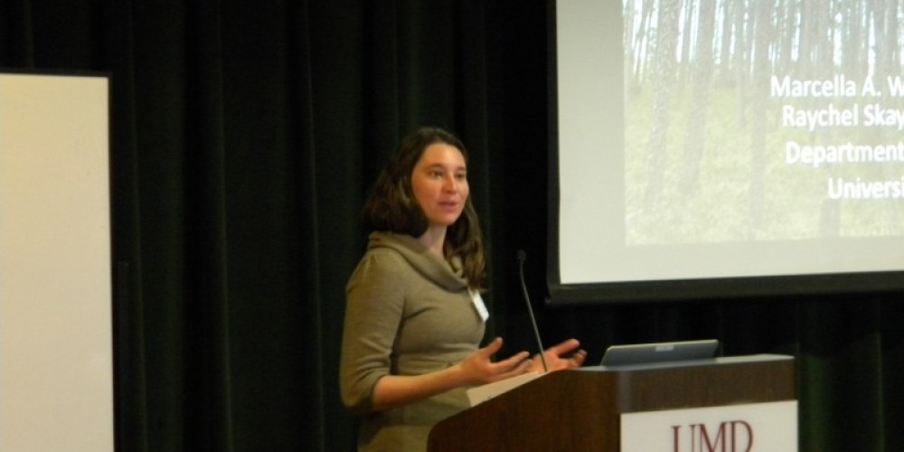 Marcella Windmuller-Campion, UMN, Influence of Eastern Spruce Dwarf Mistletoe on Structure and Composition of Black Spruce Forests