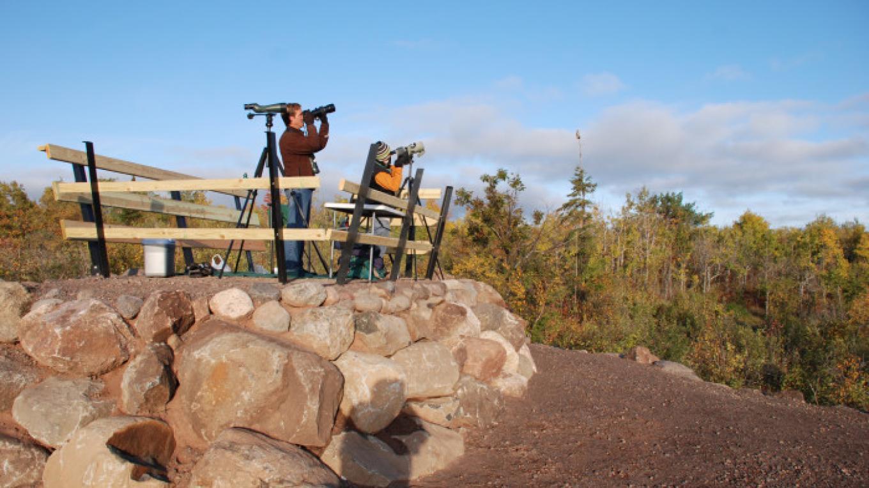Volunteers helping with bird counts. – Andrew Longtin