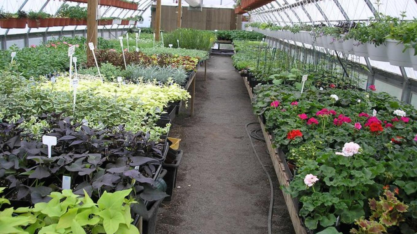 Unique greenhouse in rural country side south of Thunder Bay – Karen Breukelman, Meagan Breukelman