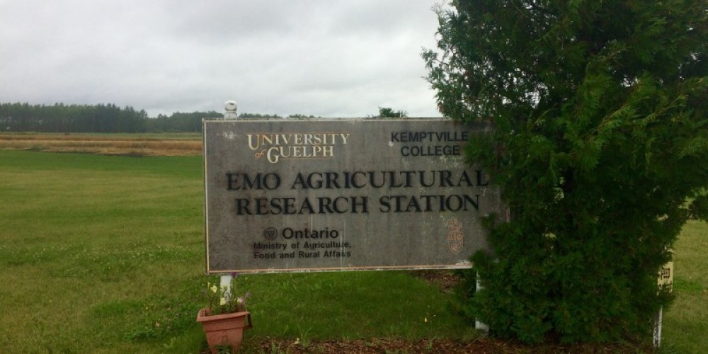 Our sign is from 1990, soon to be updated but can be seen from the highway – Nicholas Donaldson