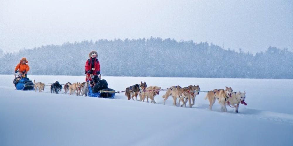 Light snow falling while dogsledding in the Boundary Waters makes for a magical experience. – K. Heppner