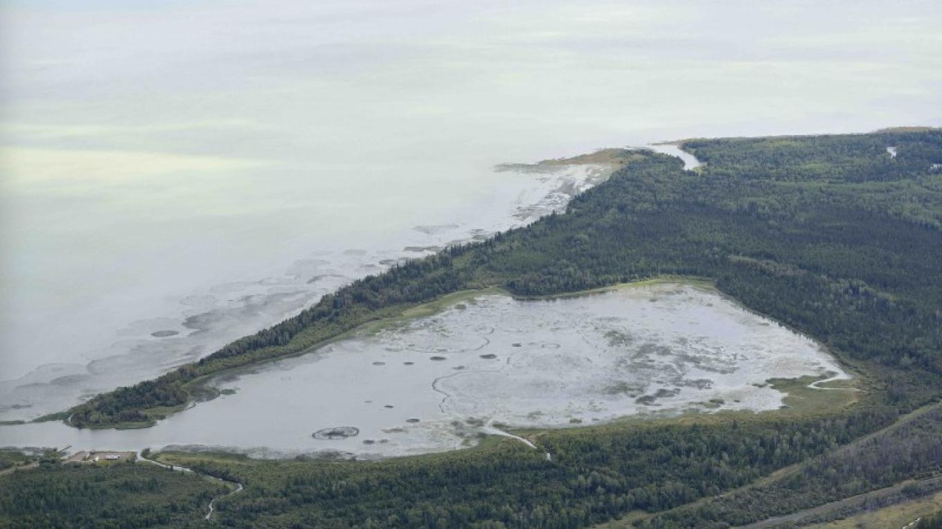 Aerial View of Hurkett Cove Conservation Area
