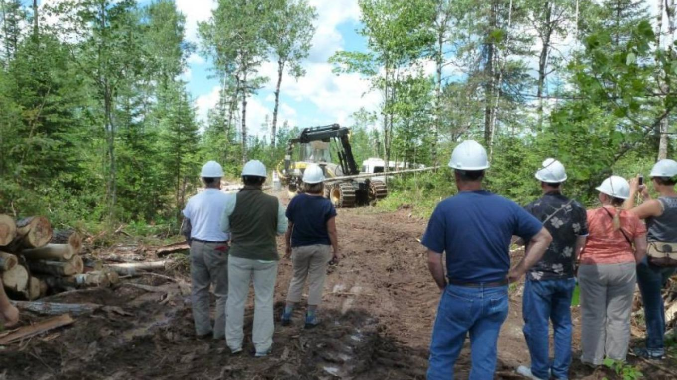 Forest Management Field Tours - how forest management can be done correctly. – John Geissler