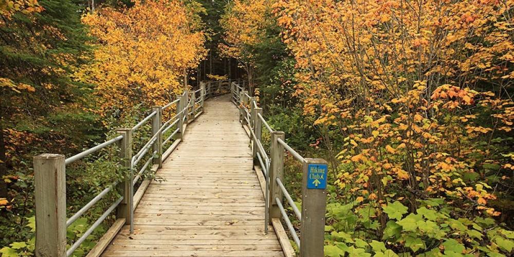 Boardwalk to High Falls – Travis Novitsky