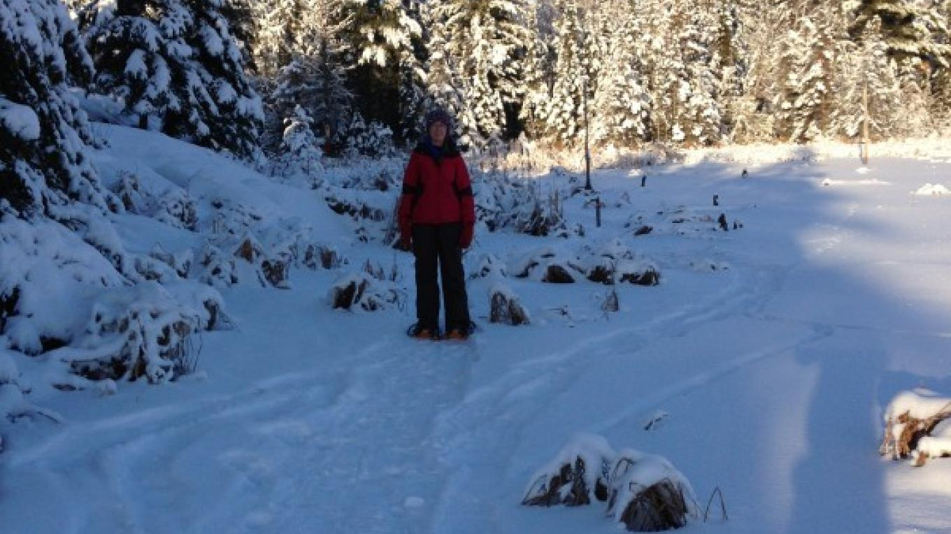 Snowshoe trails on the beaver pond – Rainy Lake Nordic Ski Club