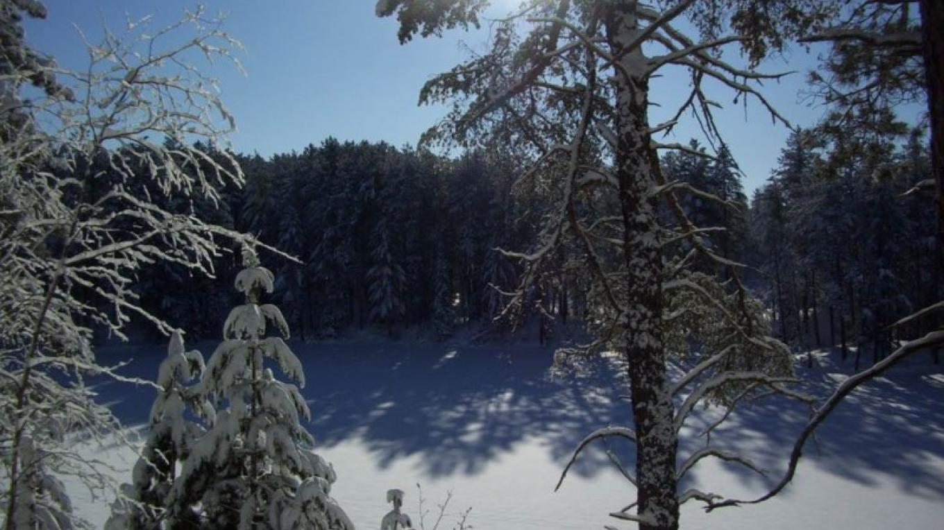 Winter at Bear Head Lake State Park – MN DNR