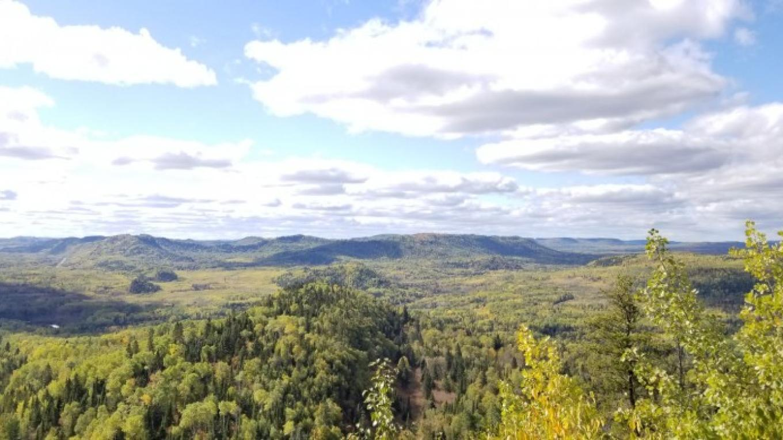 view atop James Duncan Nature Trail – Josh Oleksuk