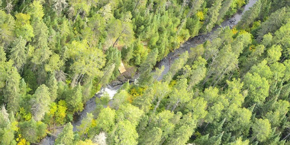 Aerial View of Cedar Falls Conservation Area