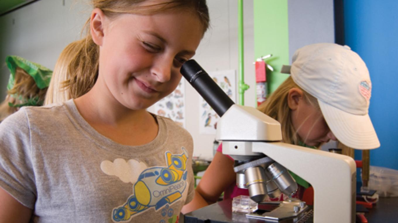 Junior scientists at work in our education program. – Allison Iacone