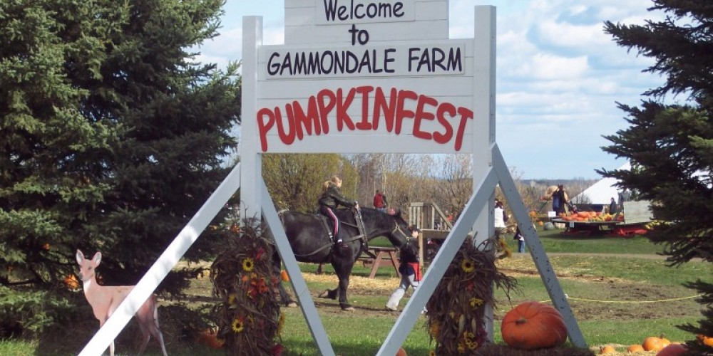 Gammondale Farm