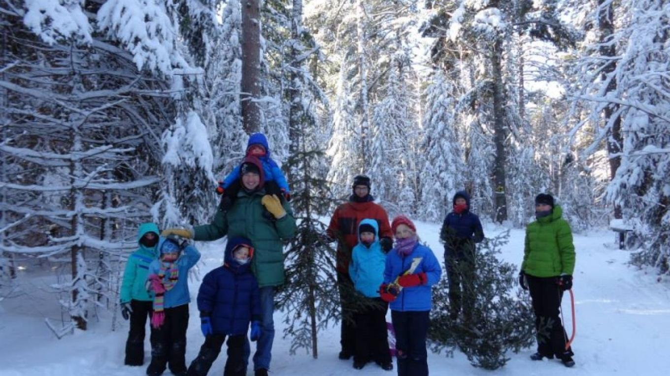 Annual Christmas Tree Cut - over 600 enjoy this beautiful event to cut your own balsam fir and help with our forest stewardship objectives. – John Geissler