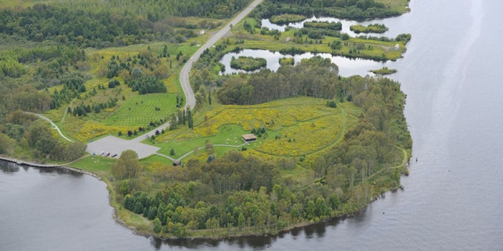 Aerial View of Mission Island Marsh Conservation Area