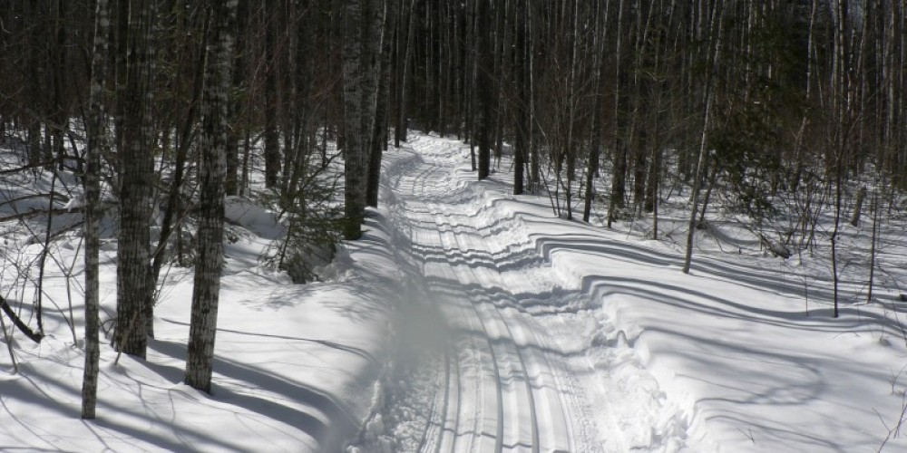 Groomed ski trails within Dawson Trail Campgrounds. Campground roads are also groomed skate lanes