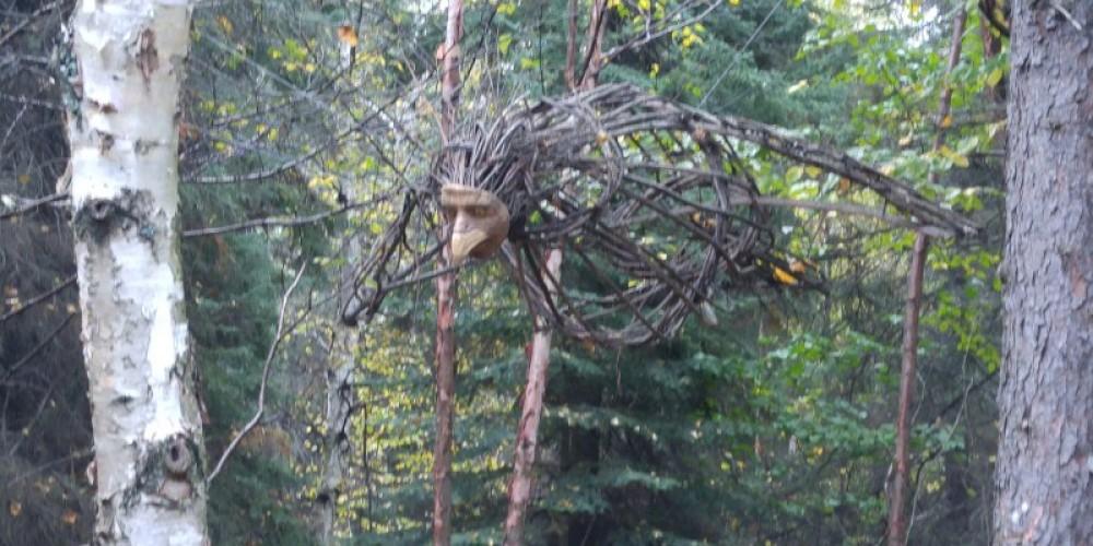 Bird in forest – Jackie Gauthier