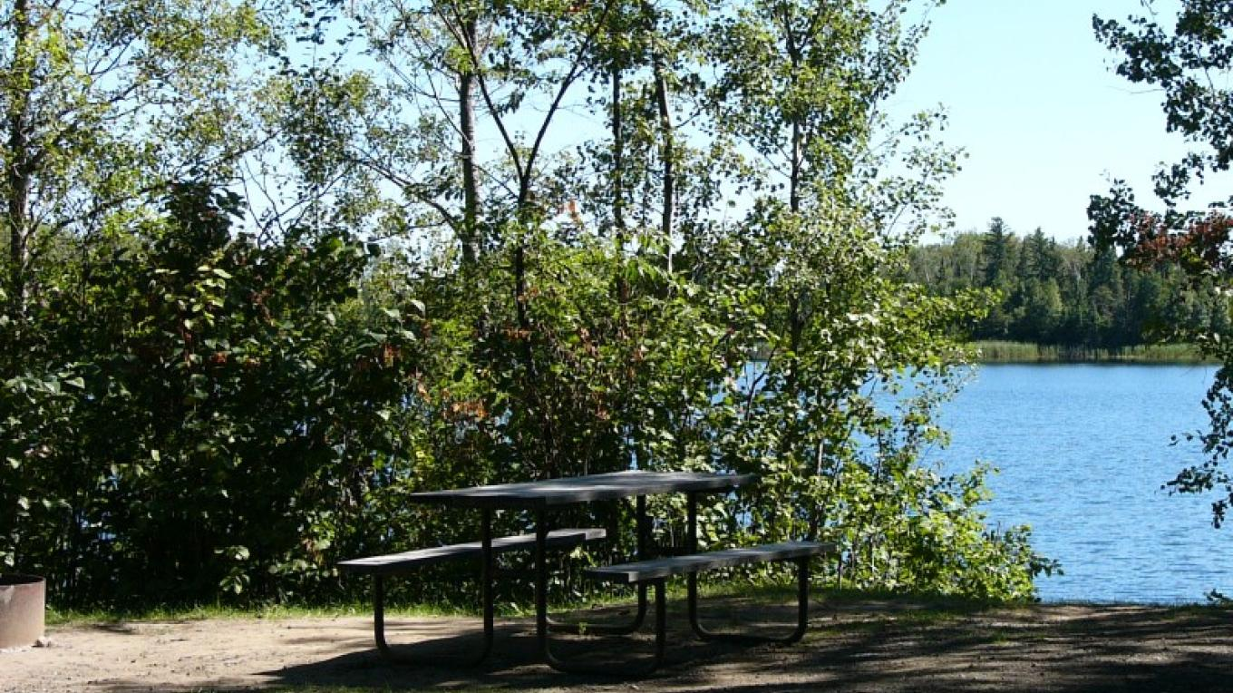 Campsite at Fisherman's Point Campground