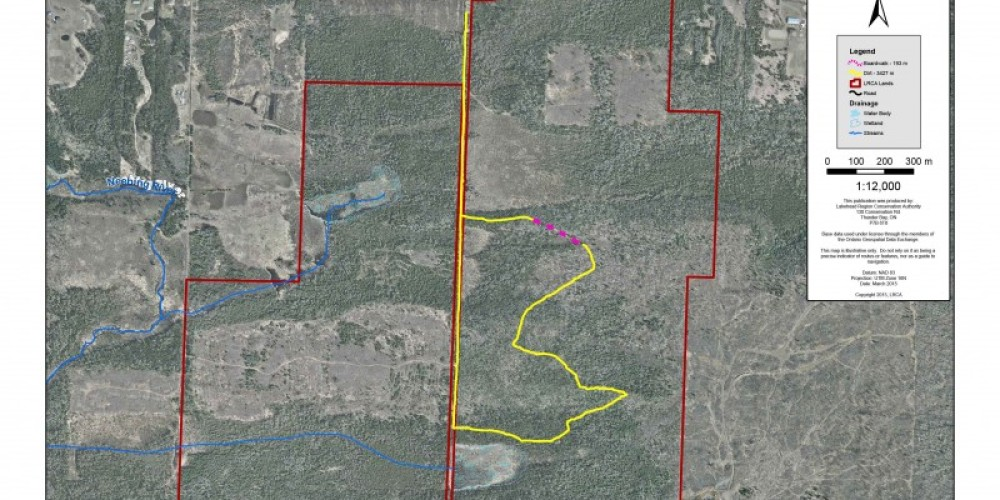 Mills Block Forest trail map – LRCA Staff