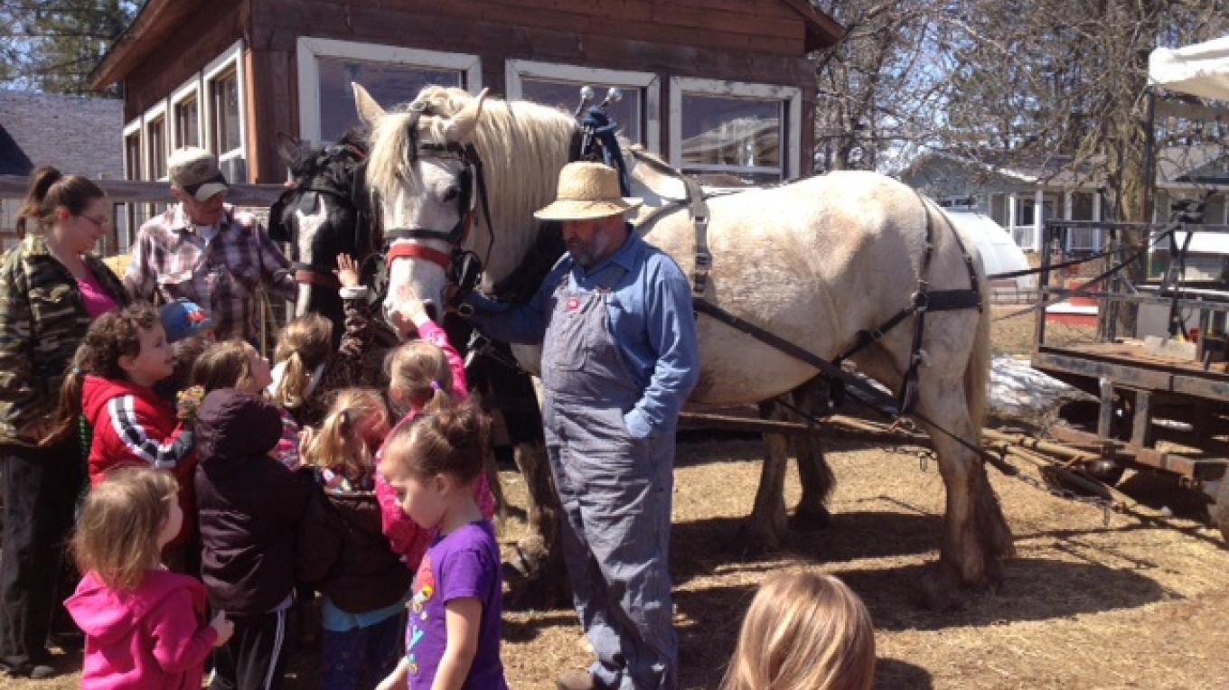 Horse drawn rides available year round – Ed Nelson