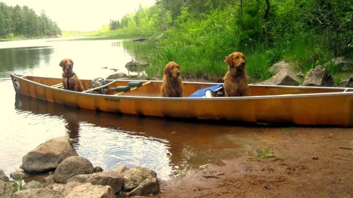 Travel the BWCA with your friends – T. Mueller