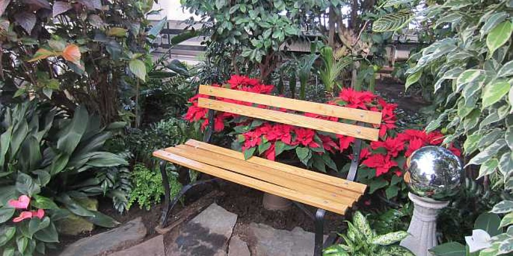 A park bench provides a serene setting to sit and relax in this indoor tropical paradise. Close your eyes and the sounds will amaze you. – Bonnie Schiedel