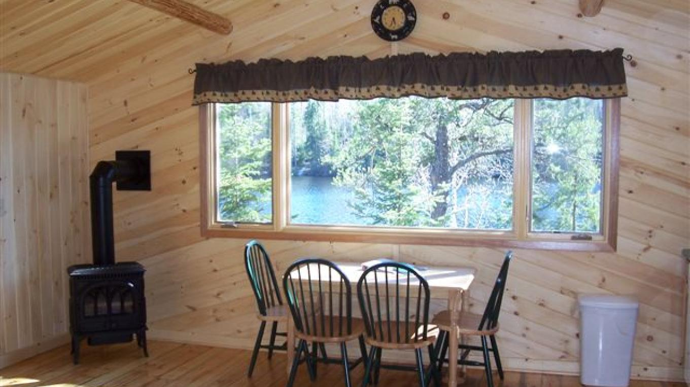 Cabin Fireplace – Owner