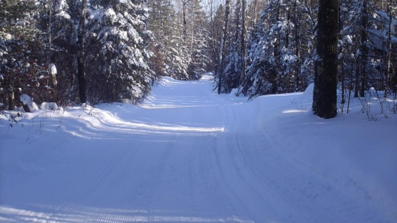 The trail beckons... – Rainy Lake Nordic Ski Club