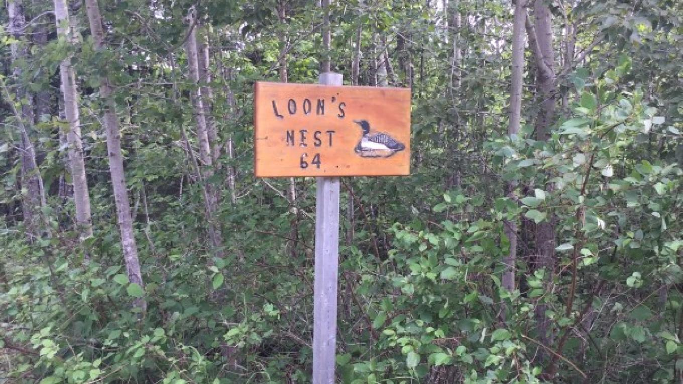 Loon's Nest - Entrance – Courtney Lanthier