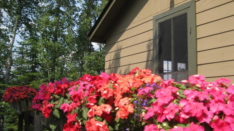 Cabin 2 – Seaton