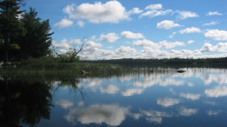 Nature's Reflections – Jody Loew
