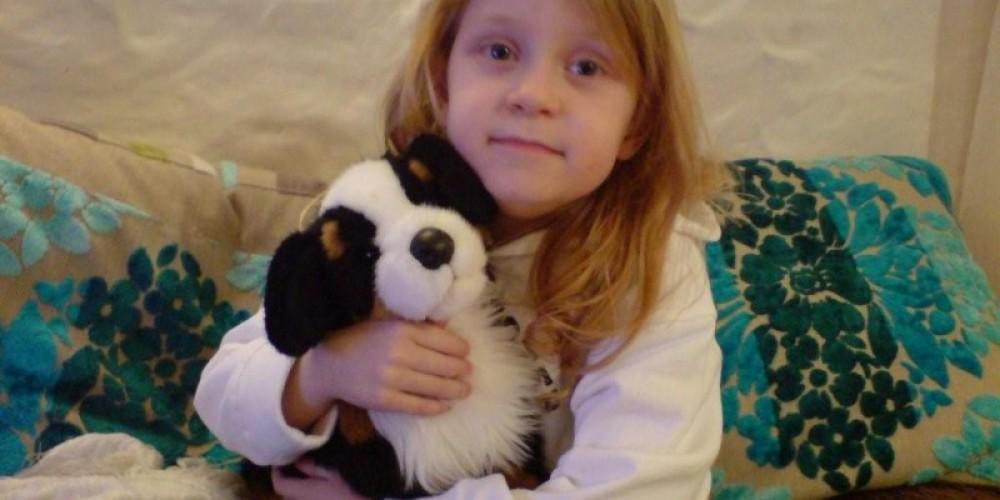 THE BERNESE MOUNTAIN PLUSH STUFFED DOG FOUND A HOME IN IRELAND! – Nicole