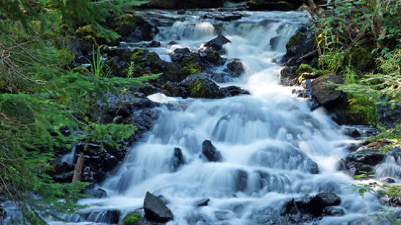 Jasper Creek Falls – Paul Sundberg