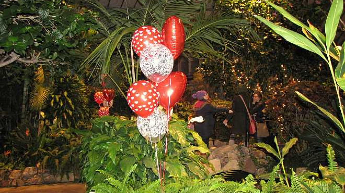 The Conservatory is a great place for a family gathering or birthday party. It is a unique setting especially at night. – Bonnie Schiedel