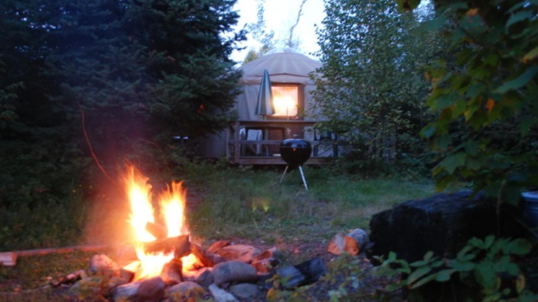 Tall Pines Yurt